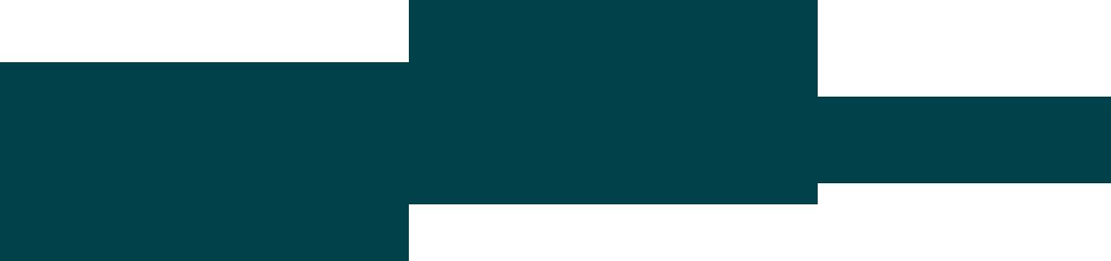 Australian Guitar Making School